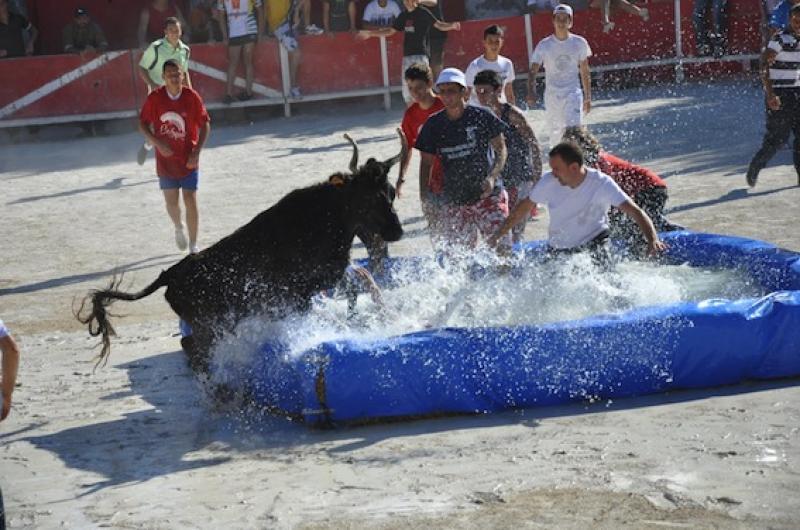 En ao t barbentane du 14 ao t aun 3 septembre 2014 - Salon toro calvet ...